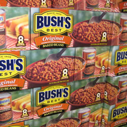 Click on the bowl of beans to visit Bush's website